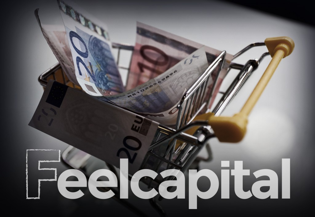 Fondos-de-inversion-feel-capital