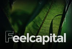 finanzas-personales-feecapital